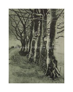 Winter Beeches Etching